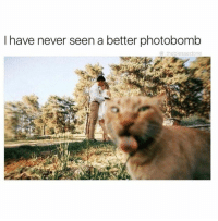photobombing: I have never seen a better photobomb  theblessedone