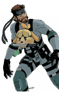 Community, Funny, and Memes: I have no idea why the smash community pairs up Snake and Isabelle, but the memes are funny https://t.co/x8UuQyjAkN