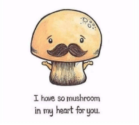 Punny 😂😂: I have so mushroom  in my heart for you Punny 😂😂