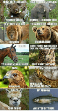 https://t.co/XnwqeAsCjw: I HAVE THE NECESSARY  YOUR KOALAFICATIONS ARE  KOALAFICATIONS  COMPLETELY IRRELEPHANT  DON'T LISTEN TO HIMI  THIS ARGUING IS BECOMING  UNBEARABLE!  HE'S LION  INDEED  HORSE PLEASE WHEN DO YOU  EVER SAY SOMETHING SMARTO  ITS MAKING MY VOICE HORSE  DON'T WORRY, OWLWAI  OUCH  I'M OUT OF HERE!  YOU ALL ARE  HAWKWARD  GIRAFFING ME CRAZY  ALPACA  LET MINNOW  YOUR THINGS  WHEN YOU GET THERE https://t.co/XnwqeAsCjw