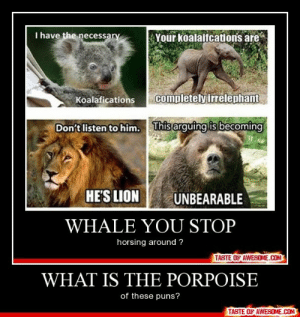 What Is The Porpoisehttp://omg-humor.tumblr.com: I have the  Your koalaifcations are  necessary  completely irrelephant  Koalafications  This arguing is becoming  Don't listen to him.  HE'S LION  UNBEARABLE  WHALE YOU STOP  horsing around ?  TASTE OF AWESOME.COM  WHAT IS THE PORPOISE  of these puns?  TASTE OF AWESOME.COM What Is The Porpoisehttp://omg-humor.tumblr.com