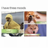 Memes, Being Salty, and True: I have three moods  Salty  Sweet  Spicy hahahah true (@petroom)