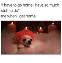 "I always have stuff to do (@girlwithnojob is a meme queen): ""i have to go home i have so much  stuff to do""  me wheni get home: I always have stuff to do (@girlwithnojob is a meme queen)"