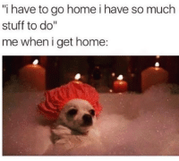 """Home, Stuff, and Get: """"i have to go home i have so much  stuff to do""""  me when i get home:"""