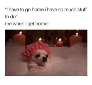 """Home, Stuff, and Get: i have to go home i have so much stuff  to do""""  me when i get home:"""