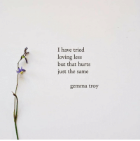 Troy, Hurts, and Just: I have tried  loving less  but that hurts  just the same  gemma troy