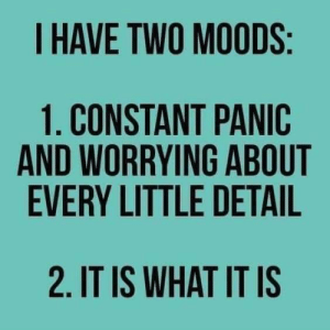 Memes, 🤖, and What: I HAVE TWO MOODS  1. CONSTANT PANIC  AND WORRYING ABOUT  EVERY LITTLE DETAIL  2. IT IS WHAT IT IS