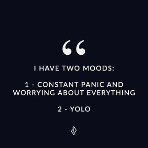 Yolo, Everything, and Worrying: I HAVE TWO MOODS:  1 CONSTANT PANIC AND  WORRYING ABOUT EVERYTHING  2 YOLO
