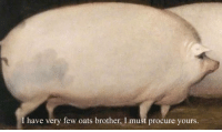 """""""All animals are equal- but some animals are more equal than others."""" (G.O!): I have very few oats brother, I must procure yours. """"All animals are equal- but some animals are more equal than others."""" (G.O!)"""