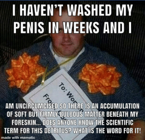 Sega: I HAVEN'T WASHED MY  PENIS IN WEEKS AND I  AM UNCİRCUMC İSEDISO THEREIS AN ACCUMULATION  OF SOFT BUT FIRMLY BULBOUS MATTER BENEATH MY  FORESKIN. DOES ANYONE KNOW THE SCIENTIFIC  TERM FOR THIS DETRITUS? W HAT IS THE WORD FOR IT!  made with mematic Sega