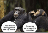 Girls, Terrible Facebook, and Boy: I hear they're  letting girls in  the Boy Scouts  Someones  gotta make the  sammiches
