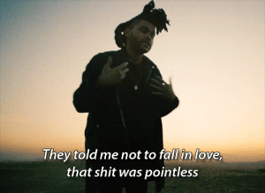 That shit was pointless  Follow for more relatable love and life quotes     feel free to message me or submit posts!!: I hey told me hot to rall in love  that shit was pointless That shit was pointless  Follow for more relatable love and life quotes     feel free to message me or submit posts!!