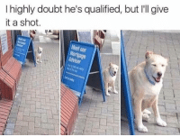 """Tumblr, Blog, and Http: I highly doubt he's qualified, but I'll give  it a shot.  Meet our  ortgage  Advise <p><a href=""""http://memehumor.net/post/173555950816/id-give-him-my-trust"""" class=""""tumblr_blog"""">memehumor</a>:</p>  <blockquote><p>I'd give him my trust</p></blockquote>"""