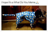 Do You Meme: I hope it's a What Do You Meme