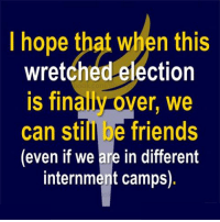 Finalies: I hope that when this  wretched election  is finali over, we  can still be friends  (even if we are in different  internment camps).