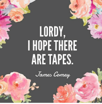 Life, Memes, and Hope: I HOPE THERE  ARE TAPES  James Corner  E  RS  EE  YHP  DTA  RET  OPE  LOR  HA New life mantra. (@ryeisenberg) comey
