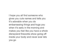 Cute, Disneyland, and Fireworks: I hope you all find someone who  gives you cute names and tells you  it's adorable when you do  embarrassing things and hugs you  when it's early in the morning and  makes you feel like you have a whole  disneyland fireworks show going off  inside your body and never ever lets  you go