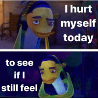 Memes, Today, and 🤖: I hurt  myself  today  to see  if I  still feel 😫😫👌🏼😩😩😩😤😤💦
