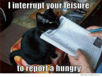 We Know Meme: I interrupt your leisure  to report a hungry  We Know Memes