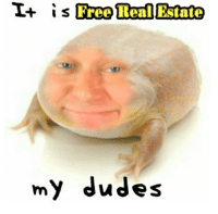 Its Free Real Estate: I+  is  Free Real Estate  my dudes