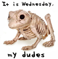 My doots: I+ is Wednesday  my dudes My doots