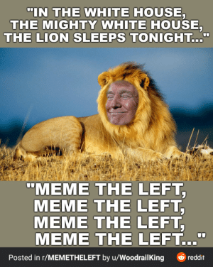 I just discovery a subreddit call MEME THE LEFT, and this was one of they post: I just discovery a subreddit call MEME THE LEFT, and this was one of they post