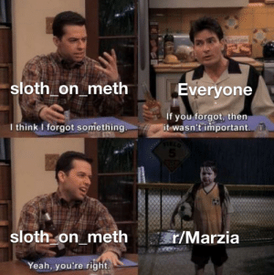 I just found out that sloth_on_meth is the mod for r/marzia as well: I just found out that sloth_on_meth is the mod for r/marzia as well