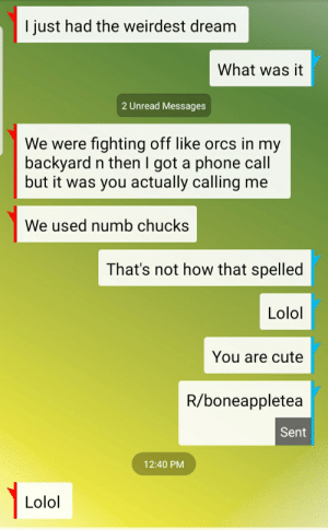 Numb chucks: I just had the weirdest dream  What was it  2 Unread Messages  We were fighting off like orcs in my  backyard n then I got a phone call  but it was you actually calling me  We used numb chucks  That's not how that spelled  Lolol  You are cute  R/boneappletea  Sent  12:40 PM  Lolol Numb chucks