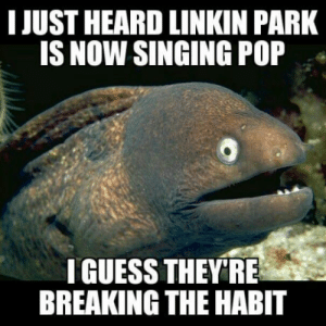 But in the end it doesnt even matter right?: I JUST HEARD LINKIN PARK  IS NOW SINGING POP  IGUESS THEYRE  BREAKING THE HABIT But in the end it doesnt even matter right?