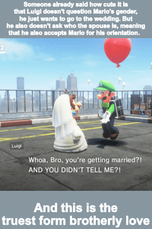 I just loved the moment where Luigi saw Mario rocking the dress.: I just loved the moment where Luigi saw Mario rocking the dress.