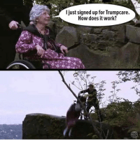 Memes, Work, and 🤖: I just signed up for Trumpcare.  How does it work? Seems legit @shitheadsteve