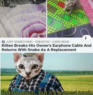 Work, Best, and Snake: i  JUST SOMETHING-CREATIVE 2 MIN READ  Kitten Breaks His Owner's Earphone Cable And  Returns With Snake As A Replacement  lt ainit much, but it's honest work Hes trying his best :)
