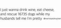 Dogs, Memes, and Wine: I just wanna drink wine, eat cheese,  and rescue 16735 dogs while my  husbands tell me I'm pretty amartinisandmayhem Ain't much to ask for is it.