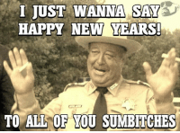 Sumbitch: I JUST WANNA SAY  HAPPY NEW YEARS!  TO ALL OF YOU SUMBITCHES
