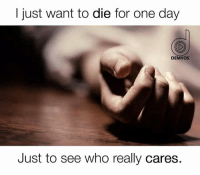 Let's see: I just want to die for one day  DEMYOS  Just to see who really cares. Let's see