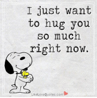 I Just Want To Hug You So Much Right Now Likelove Quotescom