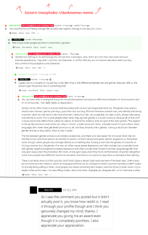 I just want to share this wholesome interaction I had today, a success story about a bit of good coming from a transphobic post. Say hello to a new ally, I directed them to this sub so maybe they'll see it.: I just want to share this wholesome interaction I had today, a success story about a bit of good coming from a transphobic post. Say hello to a new ally, I directed them to this sub so maybe they'll see it.