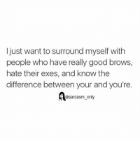 Funny, Memes, and Sarcasm: I just want to surround myself with  people who have really good brows,  hate their exes, and know the  difference between your and you're  @sarcasm only ⠀