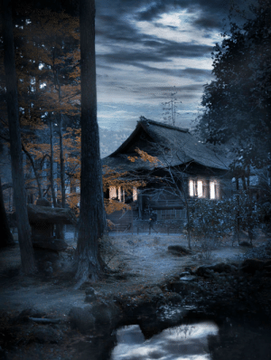 I just won 1st place in an editing contest hosted by Adobe with this edit of photo taken in Japan.: I just won 1st place in an editing contest hosted by Adobe with this edit of photo taken in Japan.