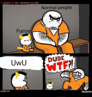 No furrys: I KILLED A MAN REWORKED OLD MEME  Normal people  Furrys  DUDE  WTF  UwU  imgflip.com  SRGRAFO No furrys