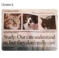 Cats, Memes, and Been: I knew it  2 The Columbian/YOUR WEEK  04232 toub, or log on to www.coumbian.co  A recent study has confirmed what cat owners have long known: Cats ndenstand when spoken to, but they choose to  ignore most of what people say.  Study: Our cats understand  us, but they don't really care  KATHY ANTONIOT  A sdy by two Unver  stress of moving them to bred ad have evolved to  strange  of T  had  fodow their owner's orders  been.