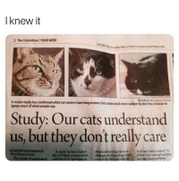 "i relate to cats: I knew it  2 The Columbian YOUR WEEK  E94.  22  tube, or log on to www.cokumbian.com  A recent study has confirmed what cat owners have long known: Cats understand when spoken to, but they choose to  ignore most of what people say.  Study: Our cats understand  us, but they dont really care  ATHYANTONIOTA study by two Universtress of moving them to  Th  bred and have evolved ""to  of Tokyo researchers  published by Sprinaerin  strange surroundings had folow their owner's orders,  norole in the outcome ofbut cats he pot been.  d i relate to cats"