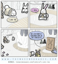 Memes, I Love You, and Chocolate: I KNOW  I LOVE YOU  HE'S IN PERFECT  HIBERNATION IN  WYAAAA!  THE CHOCOLATE  W W W T H I N G S IN S Q U A R E S  C 0 M  BONUS  THINGSINSQUARES.COM/COMICS/I-LOVE-YOU Sweet love.  Bonus + poem: http://www.thingsinsquares.com/comics/i-love-you/