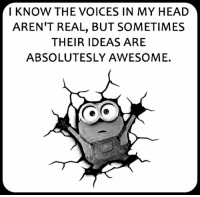voices in my head: I KNOW THE VOICES IN MY HEAD  AREN'T REAL, BUT SOMETIMES  THEIR IDEAS ARE  ABSOLUTESLY AWESOME.