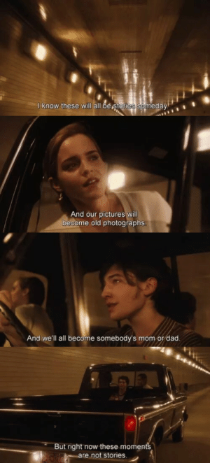 Dad, Target, and Tumblr: I know these will all be stories someday   And our pictures will  become old photographs   And we'll all become somebody's mom or dad   But right now these moments  are not stories. fisnikjasharii:  The Perks of Being a Wallflower (2012)