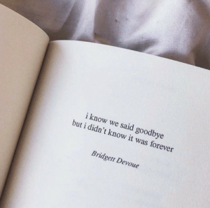 Forever, I Know, and Goodbye: i know we said goodbye  but i didn't know it was forever  Bridgett Devoue