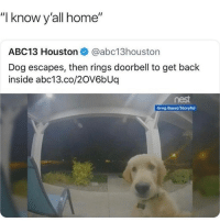 """This is great! 😂: """"I know y'all home""""  ABC13 Houston @abc13houston  Dog escapes, then rings doorbell to get back  inside abc13.co/20V6bUq  nest  Greg Basel/Storyful This is great! 😂"""