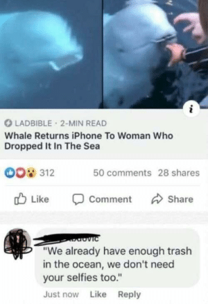 "Iphone, Trash, and Ocean: i  LADBIBLE 2-MIN READ  Whale Returns iPhone To Woman Who  Dropped It In The Sea  0o 312  50 comments 28 shares  Like  Share  Comment  viC  ""We already have enough trash  in the ocean, we don't need  your selfies too.""  Just now Like Reply That was out of the box 😅"