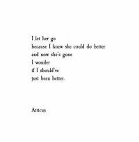 Wonder, Been, and Her: I let her go  because I knew she could do bettoer  and now she's gone  I wonder  if I should've  just been better.  Atticus