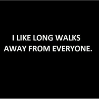 Memes, 🤖, and Like: I LIKE LONG WALKS  AWAY FROM EVERYONE. So long twats. Follow @confessionsofablonde @confessionsofablonde @confessionsofablonde @confessionsofablonde